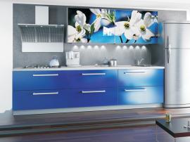 Кухня синяя с фоторепродукцией современная стильная МДФ в пленке ПВХ
