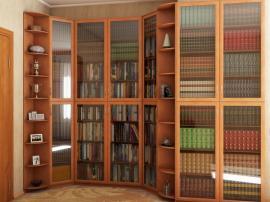 Библиотека по индивидуальному чертежу изогнутой формы с большими стеклянными фасадами