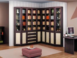 Современная мебель в библиотеку с рамочными фасадами ПВХ черная с белым